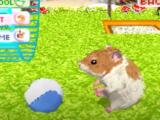 Jeu vidéo : les animaux de compagnies virtuels gagnent du terrain